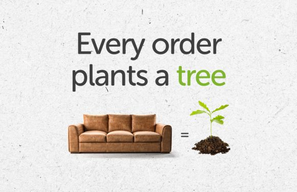 Buy a Sofa and Plant a Tree with Sofology!